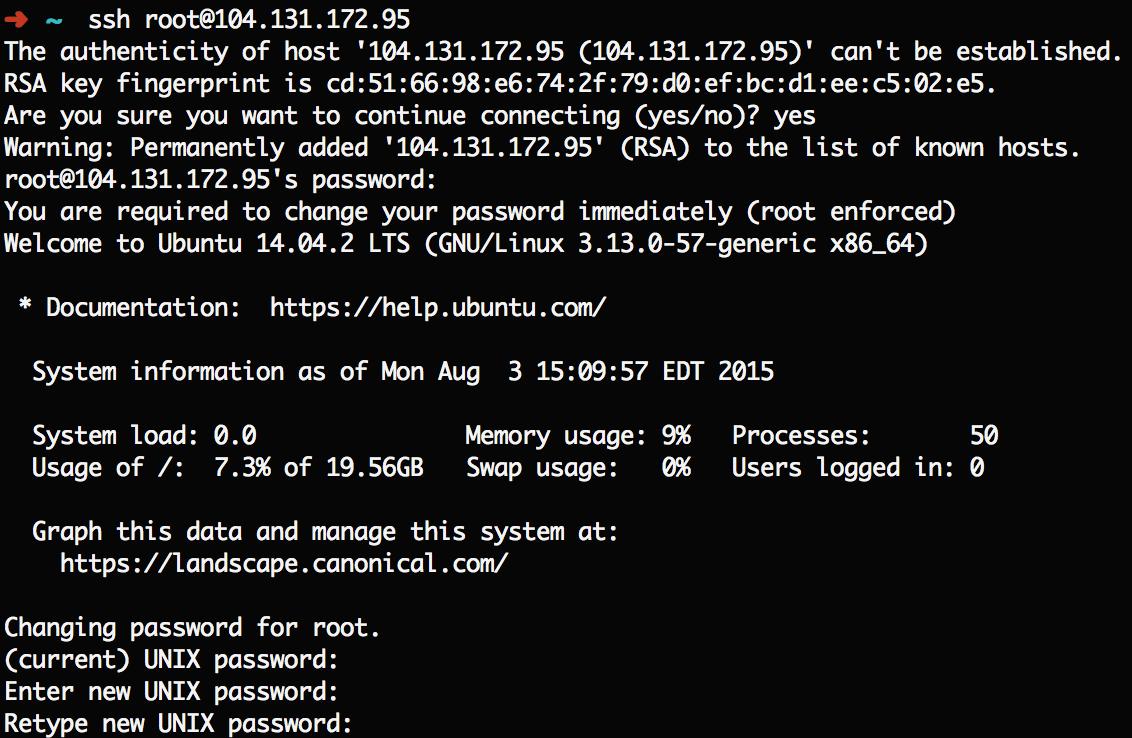 Root login process